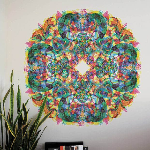 rgb-rosone-flowers-and-reptiles-wall-graphics