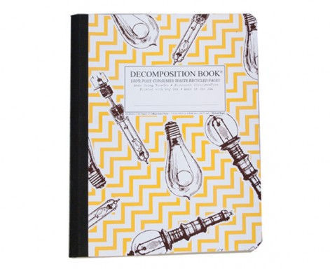Decomposition Notebook Bright Ideas by Michael Roger