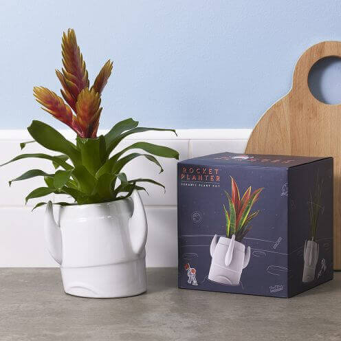 Housewarming gifts for new home owners